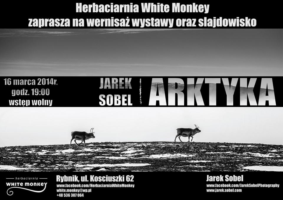 Arktyka_plakat